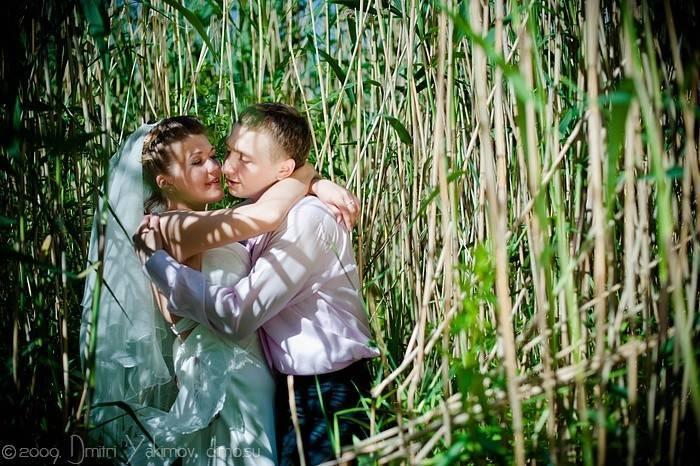 камышовые фотографии свадеб