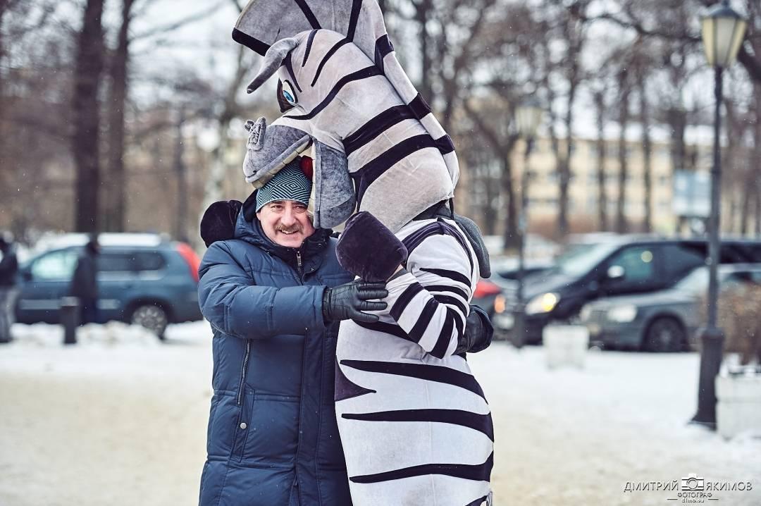 stolko rasplodilos zebr v gorode chto prosto uzha - Столько расплодилось зебр в городе, что просто ужа...